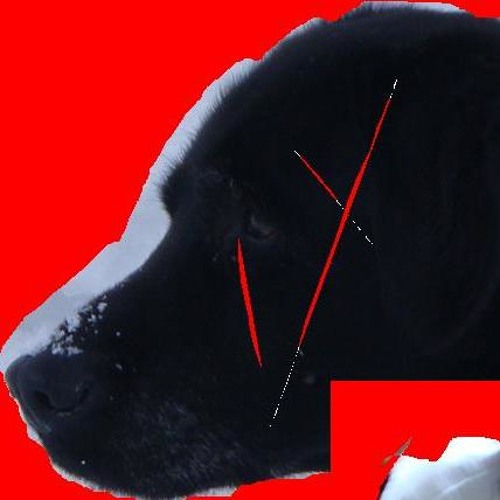 Sita's Master's avatar