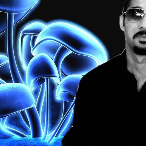 Taha Amreli's avatar