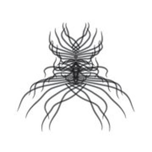 Anemone Tube's avatar