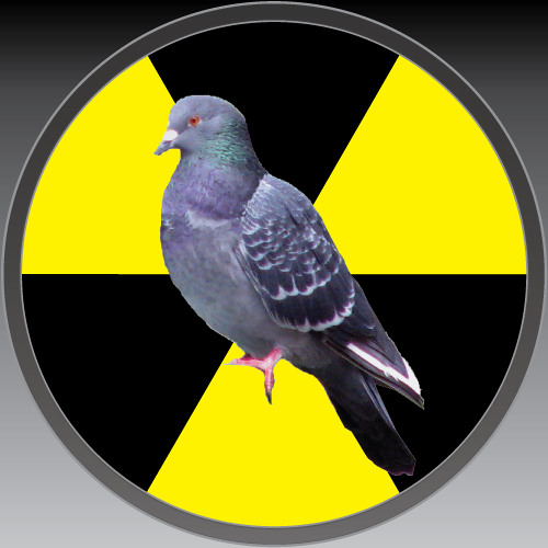 nuclearpidgeon's avatar