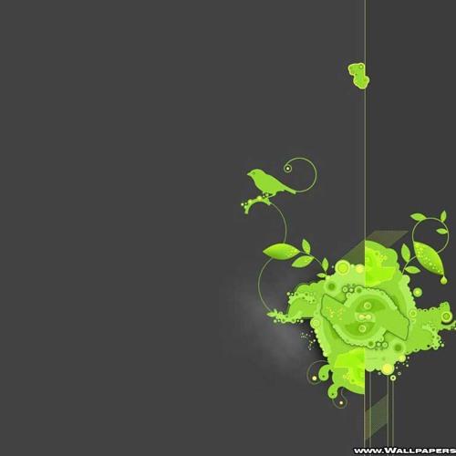 Ali.scratch's avatar