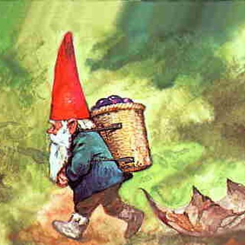 Gnomad's avatar
