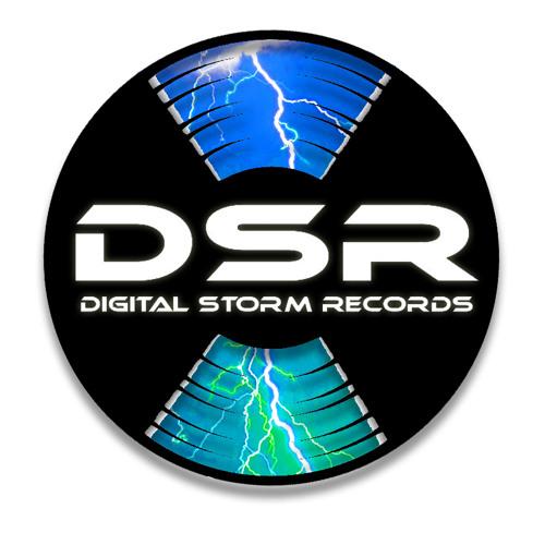 Digital Storm Records's avatar
