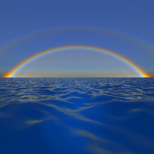 Rainbow B.'s avatar