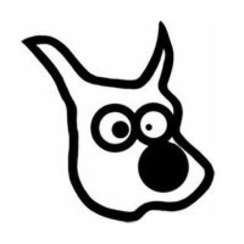 are-skurdal's avatar