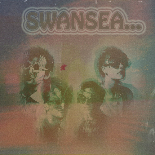 swansea recreation centre's avatar