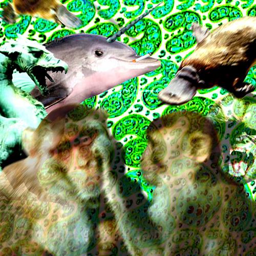 Tree Creature's avatar