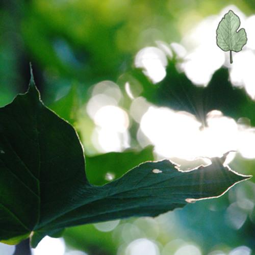 Leaf Erikson's avatar