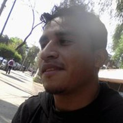 diego-cruz-martinez's avatar