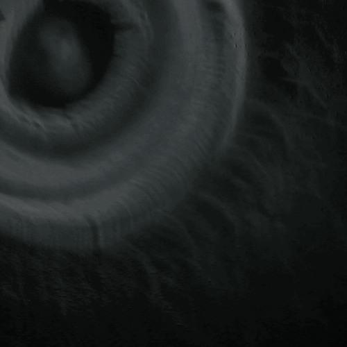 igeoi's avatar