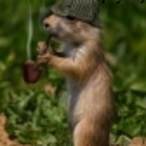 cristofer's avatar