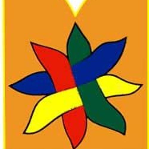 novigradsko proljece's avatar