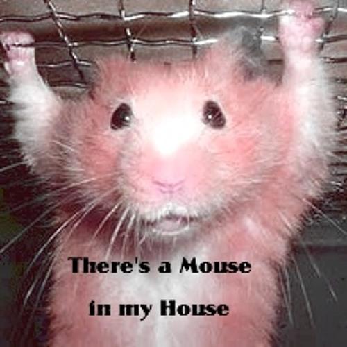 Skanker Mouse's avatar
