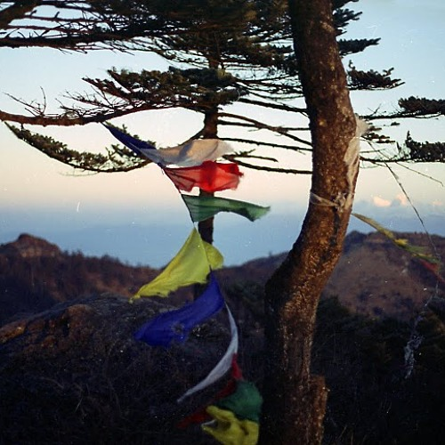 Kilimanjaro's avatar