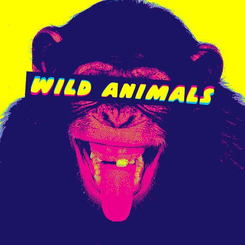 WILD ANIMALS's avatar