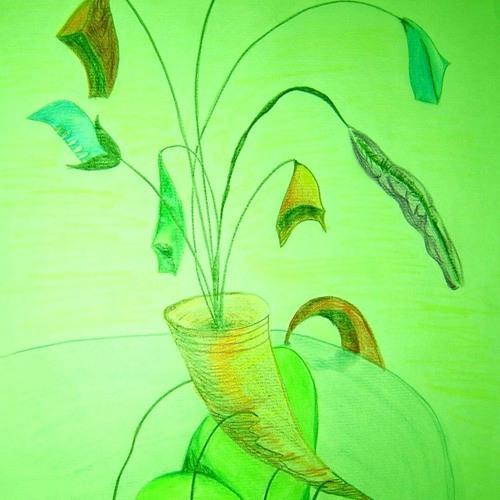 cowbell flower honpo's avatar