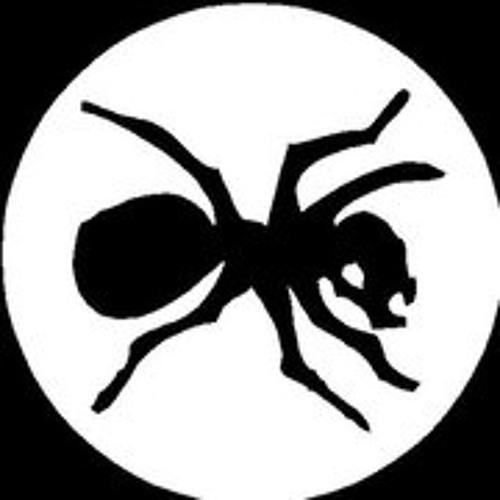 koulaa's avatar