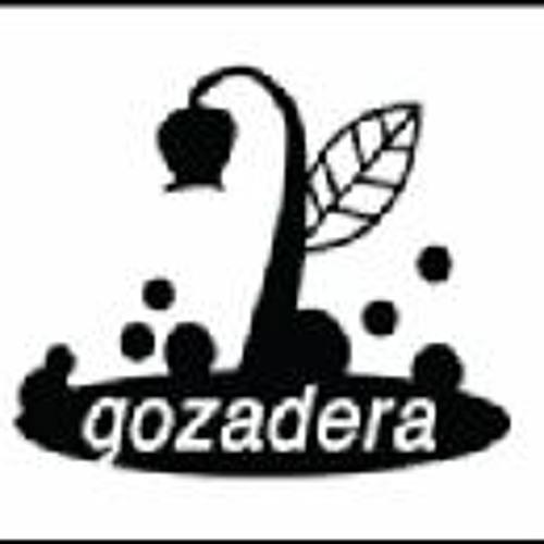 Gozadera Records's avatar