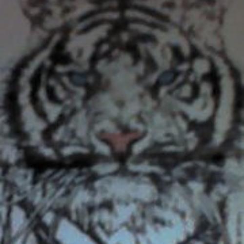 Pierce Lin's avatar