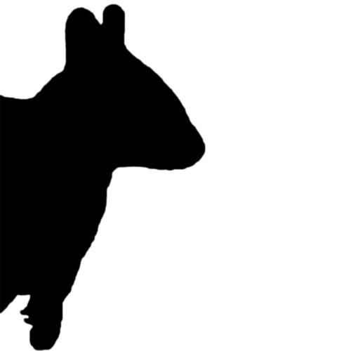 Quokka Records's avatar