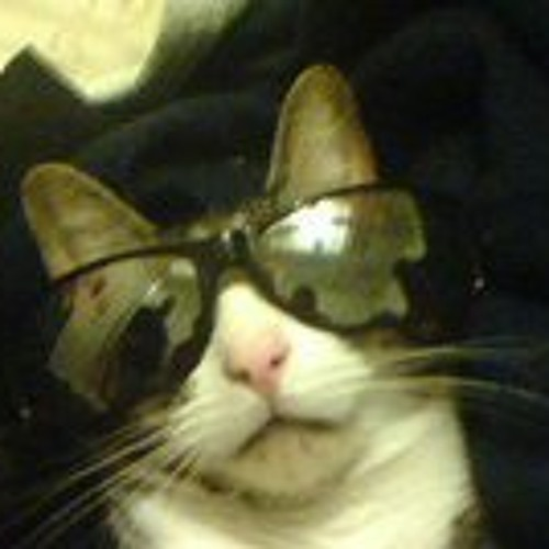 frothypuppet's avatar