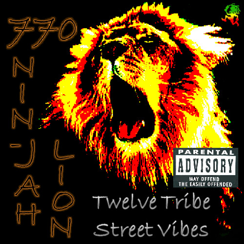 770 Nin-Jah Lion Remix's avatar
