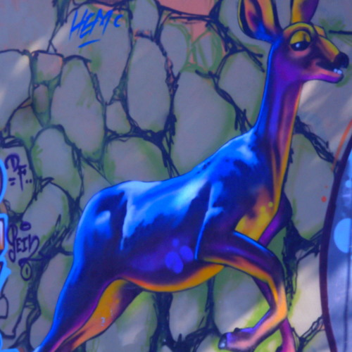 ENTELEKIO's avatar