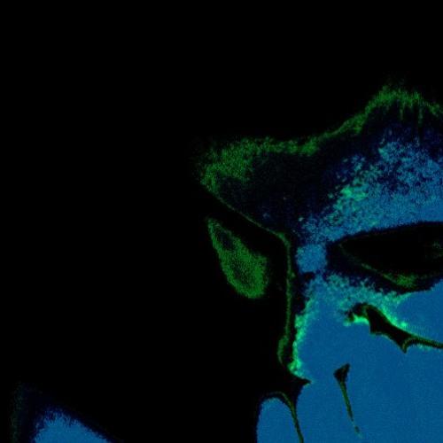 songsinaroom's avatar