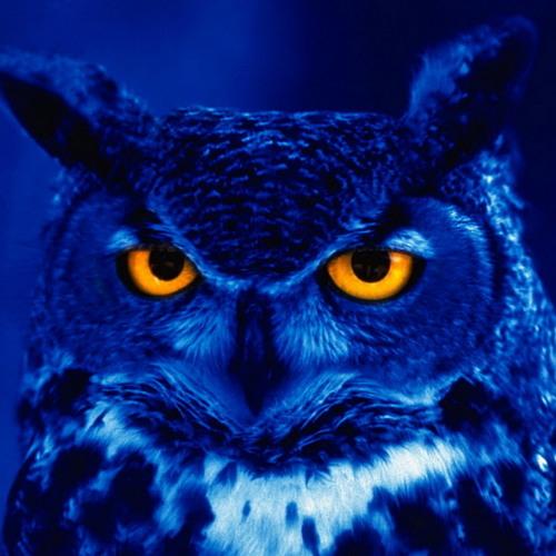 Nightime Sounds's avatar