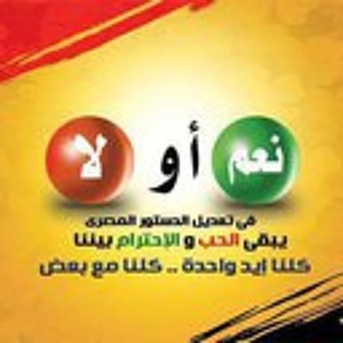 tamer-mahmoud-abdel's avatar