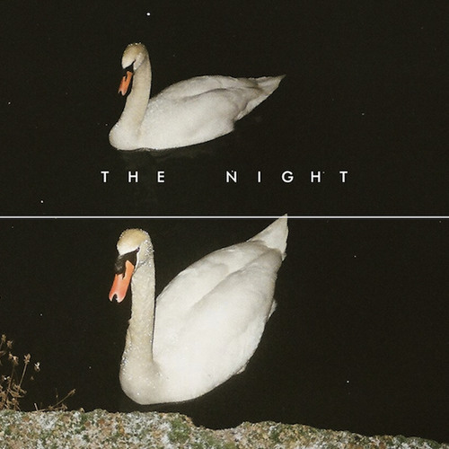 the night's avatar