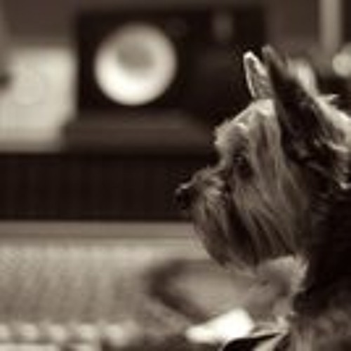 Ted Jones Music...'s avatar