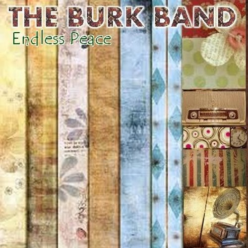 THE BURK BAND's avatar