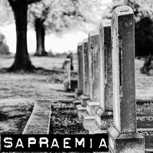 Sapraemia's avatar