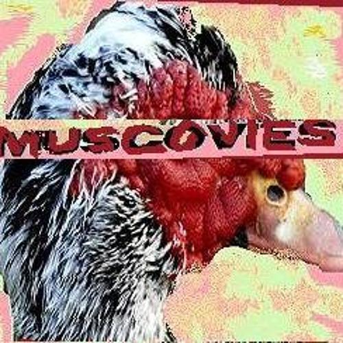MUSCOVIES's avatar