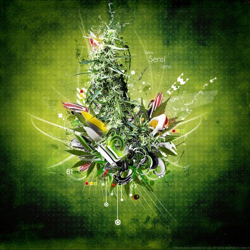 Marcellus Weed's avatar