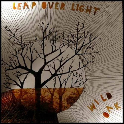 leapoverlight's avatar