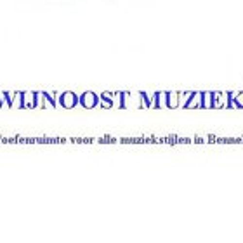 wijnoostmuziek's avatar