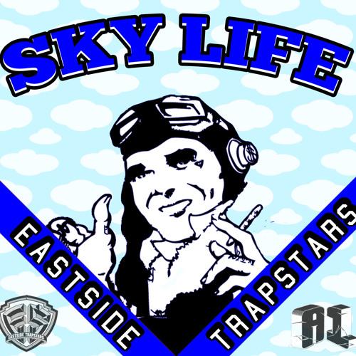 Sky life A1Fly's avatar