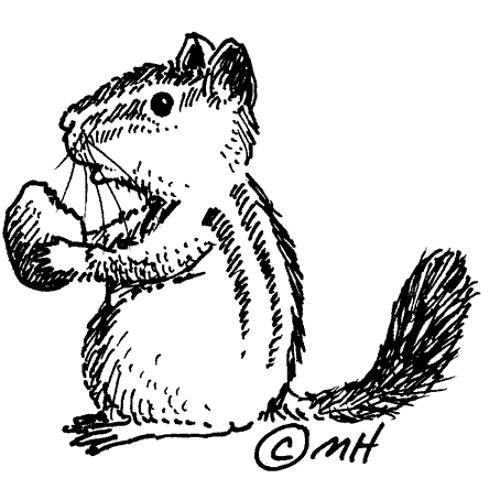 barkanguven's avatar