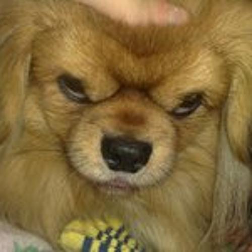 Foxas Hound's avatar