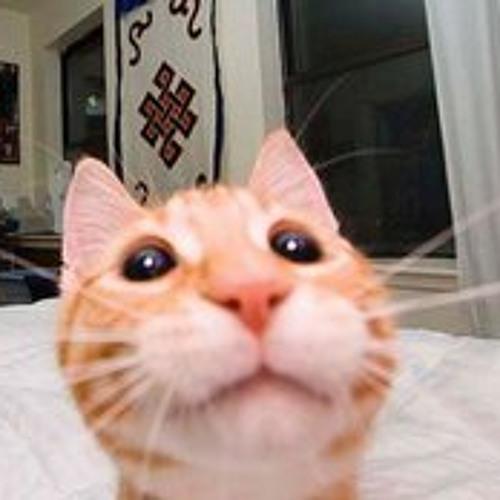 bibberfell's avatar