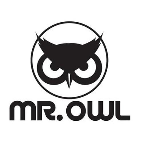 MR. OWL Mixes's avatar