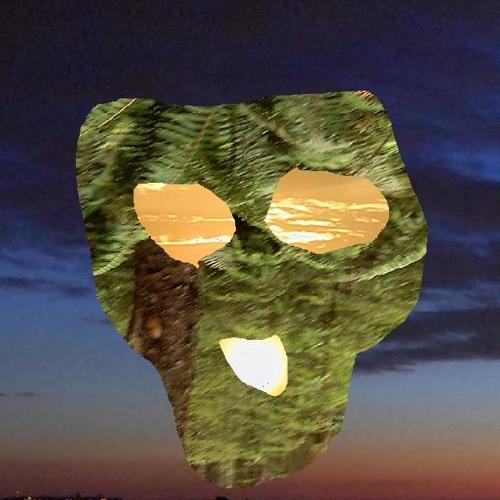 DJ Dingo Susi's avatar