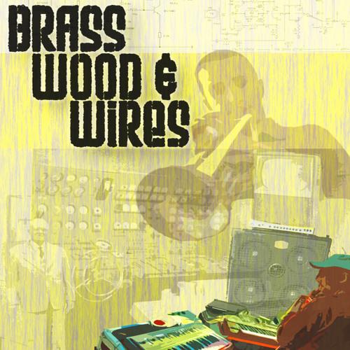 Brass Wood & Wires's avatar