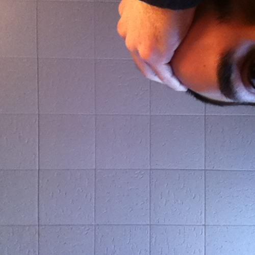 Simoncalledpeter's avatar