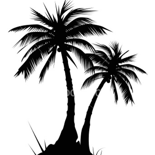 Palm Trees's avatar
