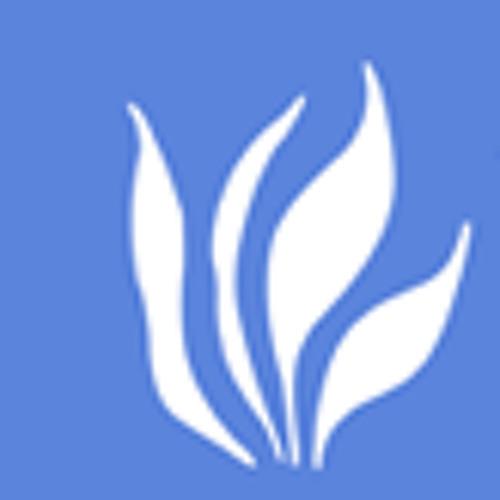 De Pieri Comunicação's avatar
