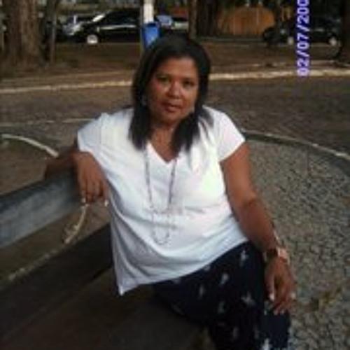 Dina Santos Silva's avatar