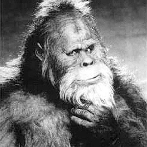 bigfoots's avatar